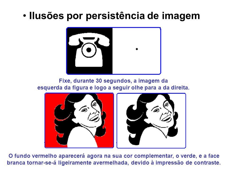 Ilusões por persistência de imagem Fixe, durante 30 segundos, a imagem da esquerda da figura e logo a seguir olhe para a da direita. O fundo vermelho