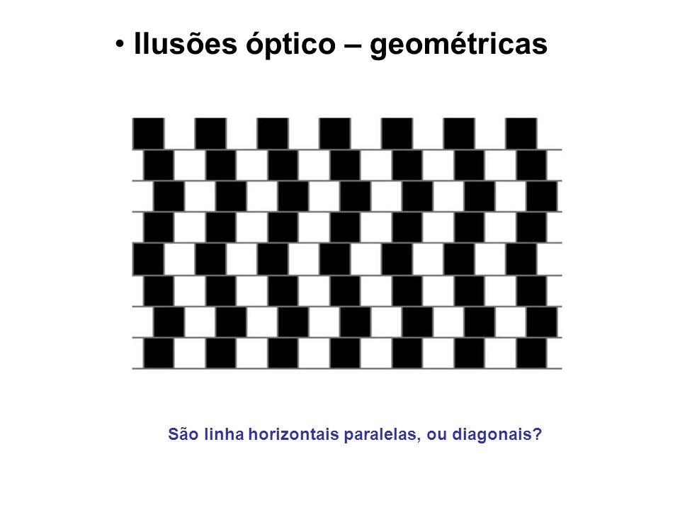 Ilusões óptico – geométricas São linha horizontais paralelas, ou diagonais?