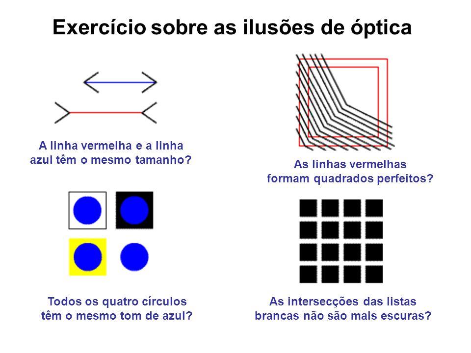 Todos os quatro círculos têm o mesmo tom de azul? A linha vermelha e a linha azul têm o mesmo tamanho? As linhas vermelhas formam quadrados perfeitos?