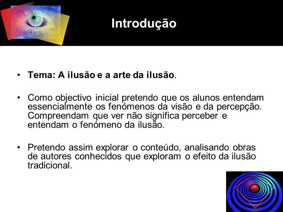 Introdução Tema: A ilusão e a arte da ilusão. Como objectivo inicial pretendo que os alunos entendam essencialmente os fenómenos da visão e da percepç