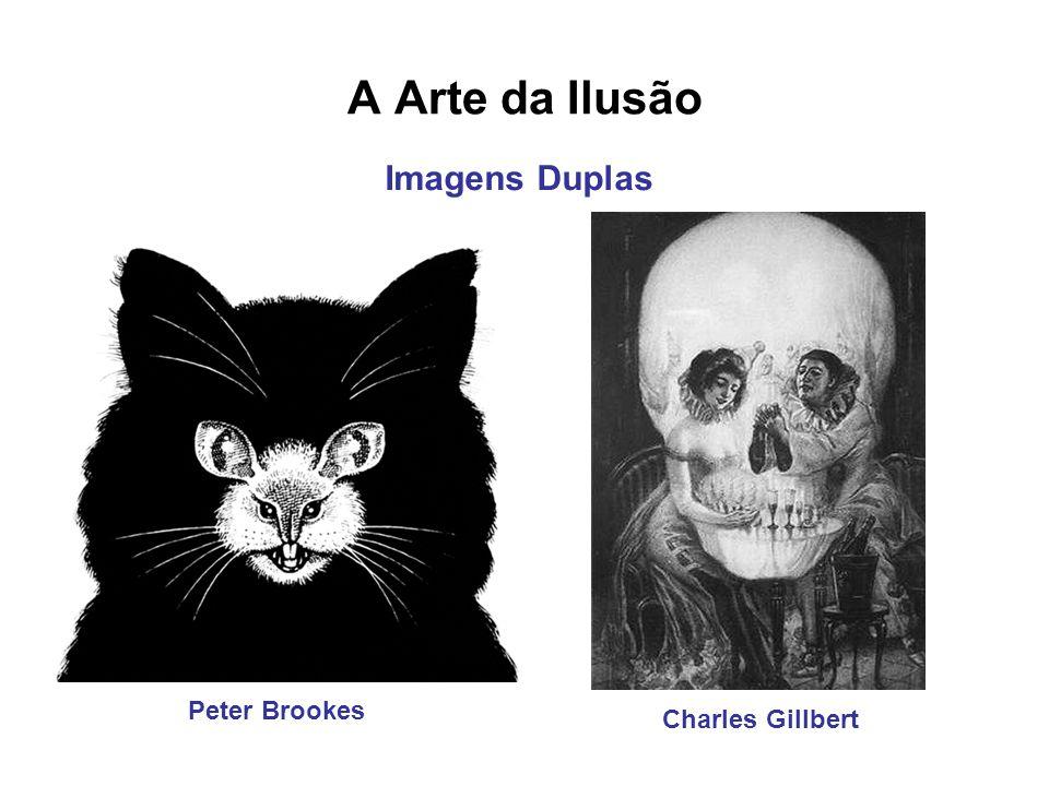 A Arte da Ilusão Peter Brookes Charles Gillbert Imagens Duplas