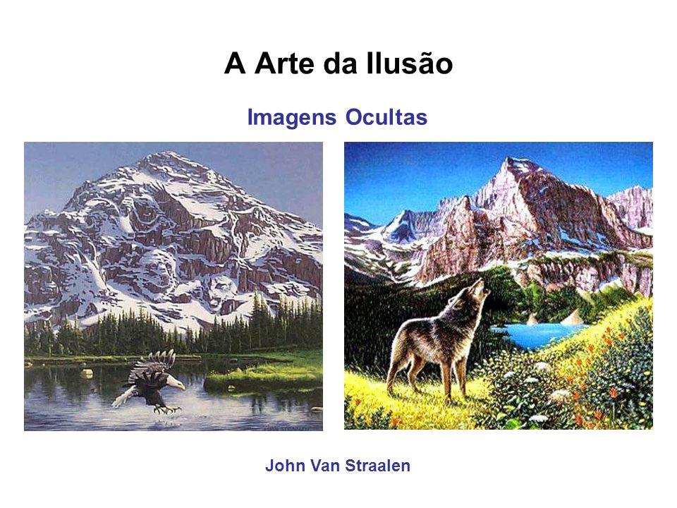 A Arte da Ilusão John Van Straalen Imagens Ocultas