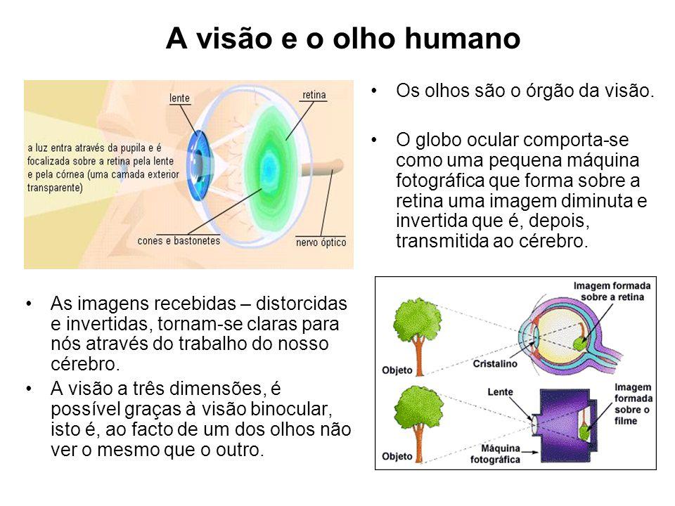 A visão e o olho humano Os olhos são o órgão da visão. O globo ocular comporta-se como uma pequena máquina fotográfica que forma sobre a retina uma im