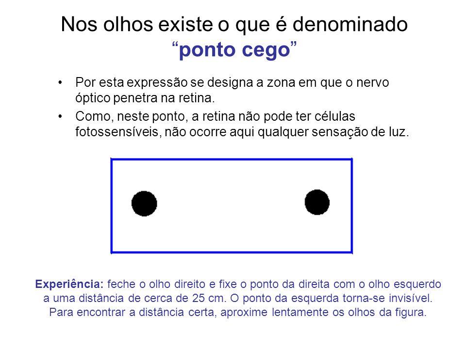 Nos olhos existe o que é denominadoponto cego Por esta expressão se designa a zona em que o nervo óptico penetra na retina. Como, neste ponto, a retin