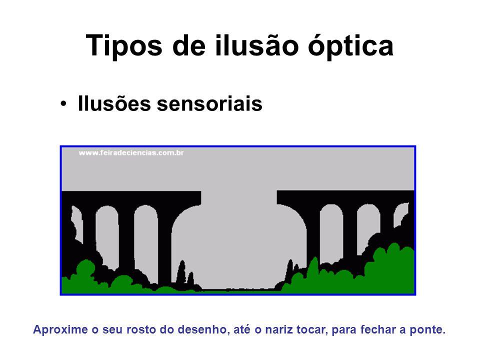 Tipos de ilusão óptica Ilusões sensoriais Aproxime o seu rosto do desenho, até o nariz tocar, para fechar a ponte.