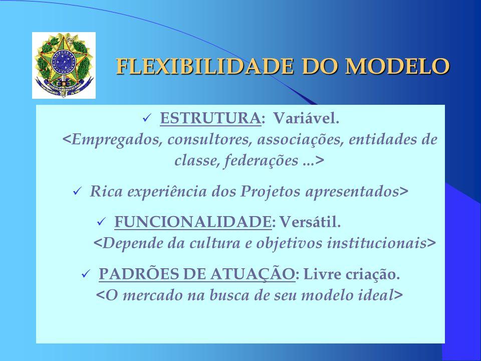 FLEXIBILIDADE DO MODELO ESTRUTURA: Variável. Rica experiência dos Projetos apresentados> FUNCIONALIDADE: Versátil. PADRÕES DE ATUAÇÃO: Livre criação.