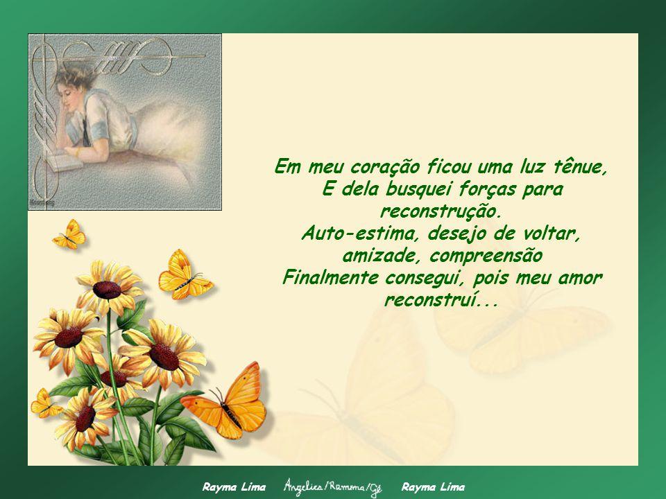 Rayma Lima Um vendaval que é capaz de destruir vidas, Destruir sentimentos e amor, Arrasta todos os nossos sonhos E tudo se transforma num emaranhado