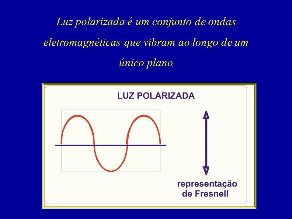 Luz polarizada é um conjunto de ondas eletromagnéticas que vibram ao longo de um único plano