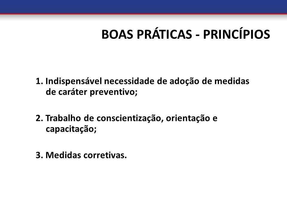 BOAS PRÁTICAS - PRINCÍPIOS 1. Indispensável necessidade de adoção de medidas de caráter preventivo; 2. Trabalho de conscientização, orientação e capac