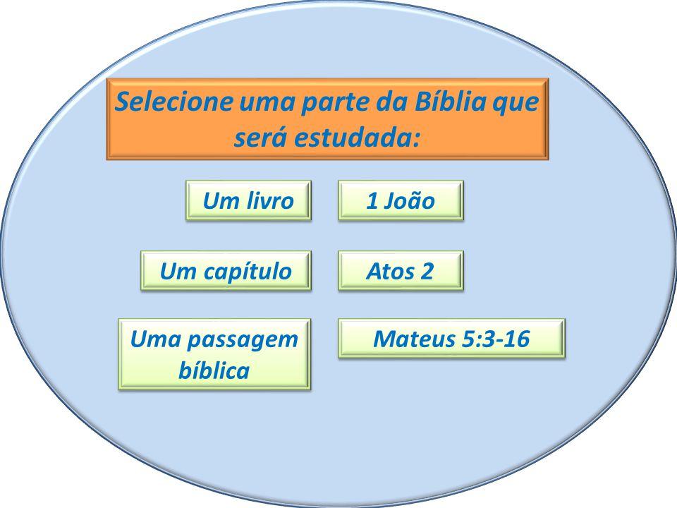 Selecione uma parte da Bíblia que será estudada: Um livro Um capítulo Uma passagem bíblica 1 João Atos 2 Mateus 5:3-16