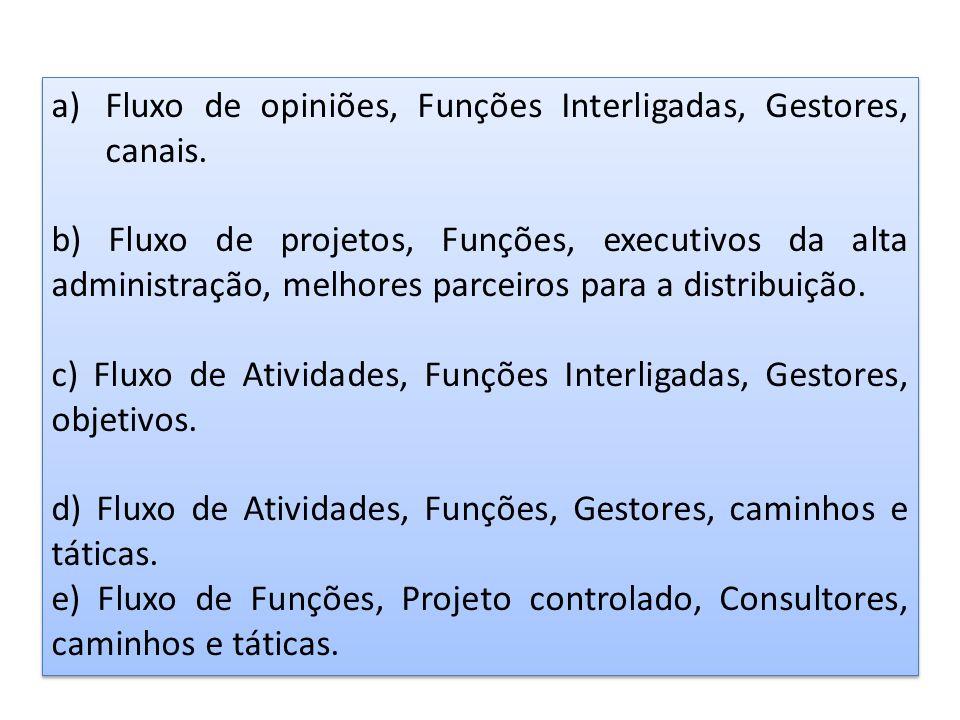 a)Fluxo de opiniões, Funções Interligadas, Gestores, canais. b) Fluxo de projetos, Funções, executivos da alta administração, melhores parceiros para