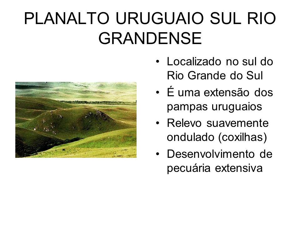 PLANALTO URUGUAIO SUL RIO GRANDENSE Localizado no sul do Rio Grande do Sul É uma extensão dos pampas uruguaios Relevo suavemente ondulado (coxilhas) D