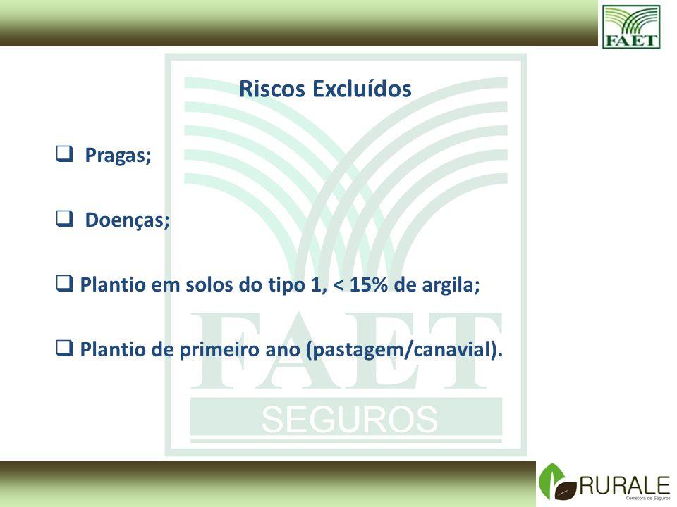 Riscos Excluídos Pragas; Doenças; Plantio em solos do tipo 1, < 15% de argila; Plantio de primeiro ano (pastagem/canavial).