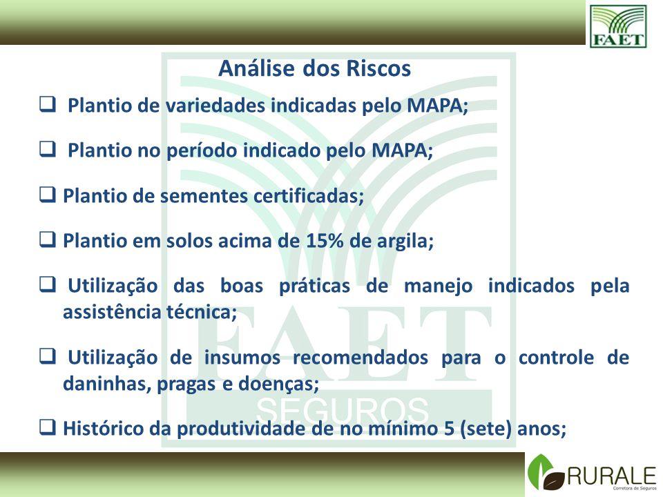 Análise dos Riscos Plantio de variedades indicadas pelo MAPA; Plantio no período indicado pelo MAPA; Plantio de sementes certificadas; Plantio em solo
