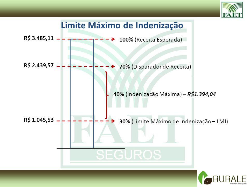 100% (Receita Esperada) 70% (Disparador de Receita) 30% (Limite Máximo de Indenização – LMI) 40% (Indenização Máxima) – R$1.394,04 Limite Máximo de In