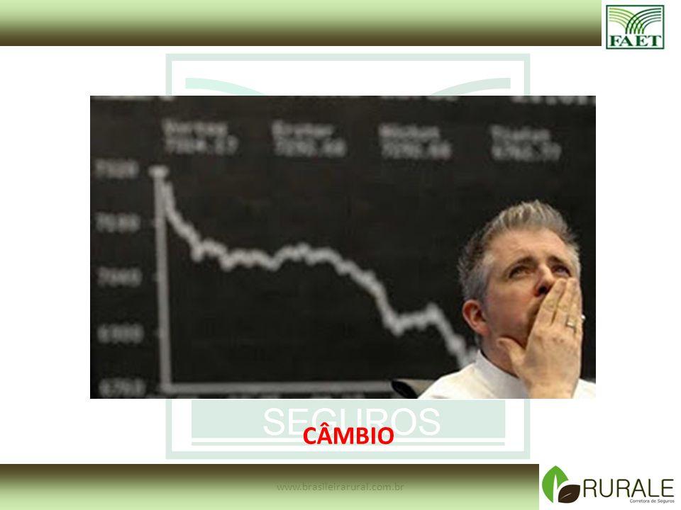 www.brasileirarural.com.br CÂMBIO