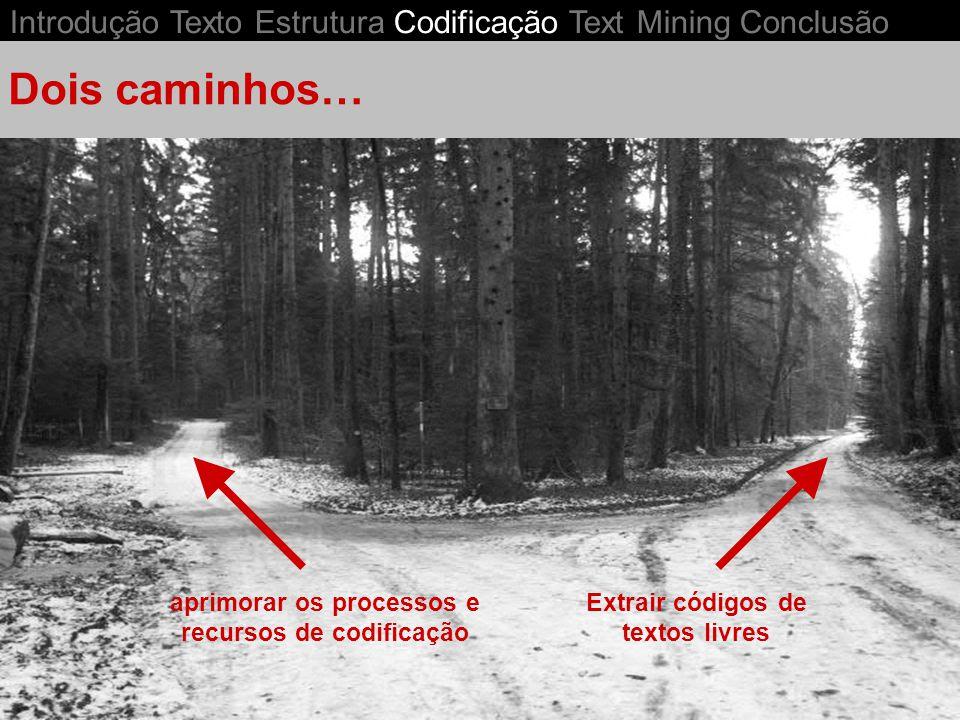 Introdução Texto Estrutura Codificação Text Mining Conclusão aprimorar os processos e recursos de codificação Extrair códigos de textos livres Dois caminhos…