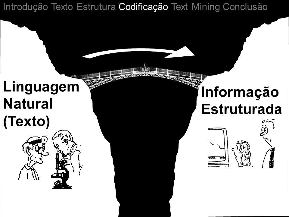 Informação Estruturada Linguagem Natural (Texto) Introdução Texto Estrutura Codificação Text Mining Conclusão