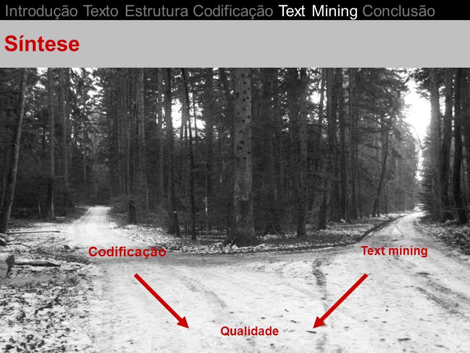 Introdução Texto Estrutura Codificação Text Mining Conclusão Text mining Síntese Codificação Qualidade