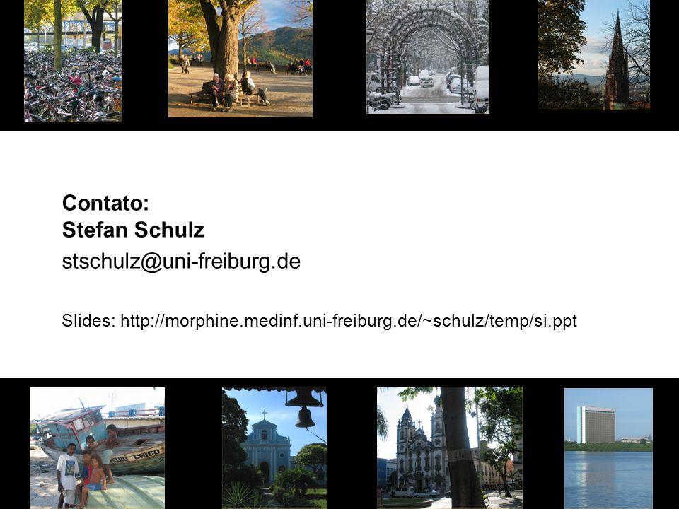 Contato: Stefan Schulz stschulz@uni-freiburg.de Slides: http://morphine.medinf.uni-freiburg.de/~schulz/temp/si.ppt