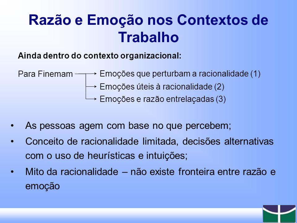 Aspectos a serem lembrados: Dificuldade de pesquisar um fenômeno subjetivo; Abordagem racional das organizações.