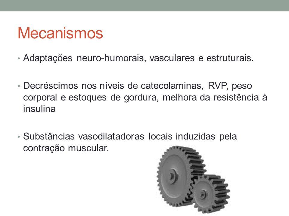 Mecanismos Adaptações neuro-humorais, vasculares e estruturais. Decréscimos nos níveis de catecolaminas, RVP, peso corporal e estoques de gordura, mel