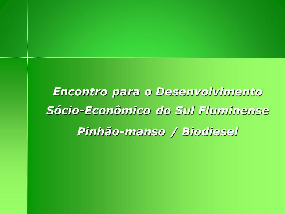 Encontro para o Desenvolvimento Sócio-Econômico do Sul Fluminense Pinhão-manso / Biodiesel