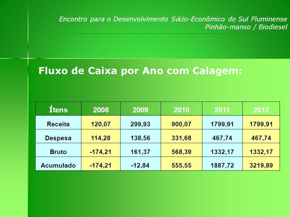 Encontro para o Desenvolvimento S ó cio-Econômico do Sul Fluminense Pinhão-manso / Biodiesel Fluxo de Caixa por Ano com Calagem: Í tens 20082009201020