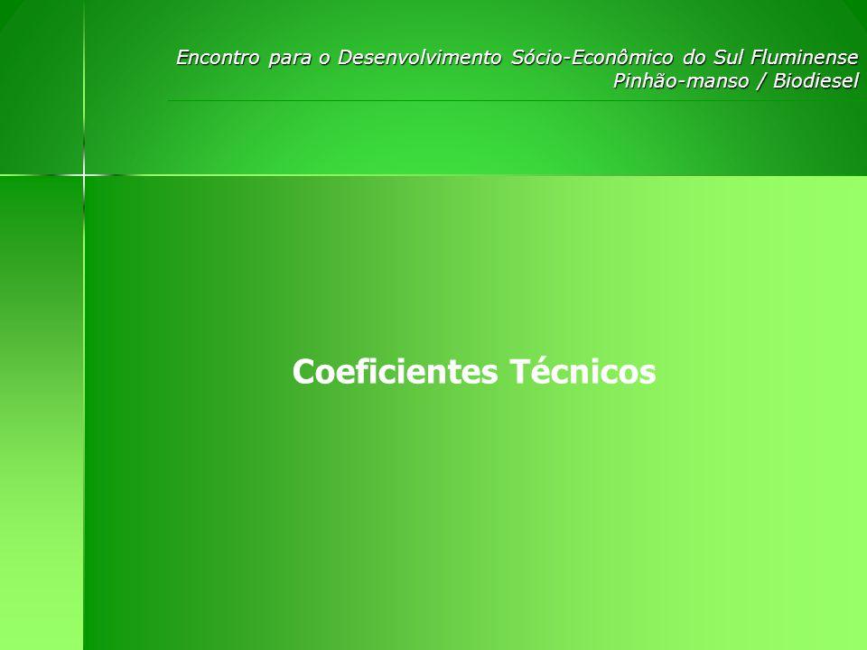 Encontro para o Desenvolvimento S ó cio-Econômico do Sul Fluminense Pinhão-manso / Biodiesel Receitas estimadas por hectare plantado: ANOProdutividade (Kg/ha)Receita Annual (R$/ha) 1400120,07 21000299,93 33000900,07 460001799,91 560001799,91 660001799,91 760001799,91 860001799,91 960001799,91 1060001799,91 Total:13919,45