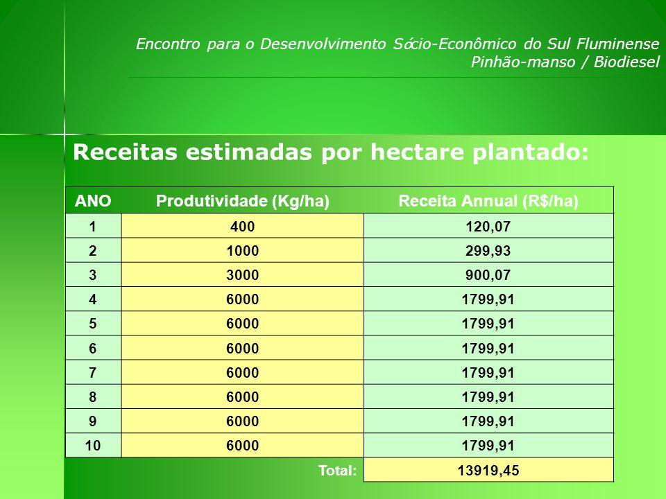 Encontro para o Desenvolvimento S ó cio-Econômico do Sul Fluminense Pinhão-manso / Biodiesel ANO Ara ç ão GradagemCalagem Aduba ç ãoPlanta ç ão Defensivos Despesa Anual 122,50 0,0054,280,0015,00114,28 20,00 108,560,0030,00138,56 30,00 271,680,0060,00331,68 40,00 347,740,00120,00467,74 50,00 347,740,00120,00467,74 60,00 347,740,00120,00467,74 70,00 347,740,00120,00467,74 80,00 347,740,00120,00467,74 90,00 347,740,00120,00467,74 100,00 347,740,00120,00467,74 Despesas estimadas por hectare sem calagem: