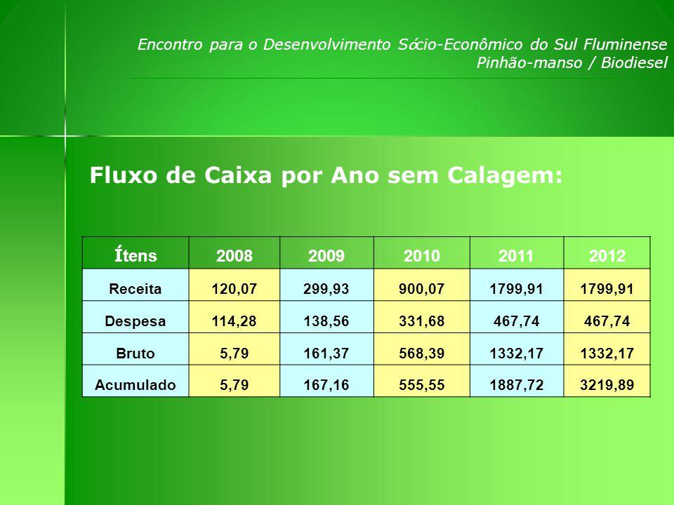 Encontro para o Desenvolvimento S ó cio-Econômico do Sul Fluminense Pinhão-manso / Biodiesel Despesas estimadas por hectare com calagem: ANO Ara ç ão GradagemCalagem Aduba ç ãoPlanta ç ão Defensivos Despesa Anual 122,50 180,0054,280,0015,00294,28 20,00 108,560,0030,00138,56 30,00 271,680,0060,00331,68 40,00 347,740,00120,00467,74 50,00 347,740,00120,00467,74 60,00 347,740,00120,00467,74 70,00 347,740,00120,00467,74 80,00 347,740,00120,00467,74 90,00 347,740,00120,00467,74 100,00 347,740,00120,00467,74