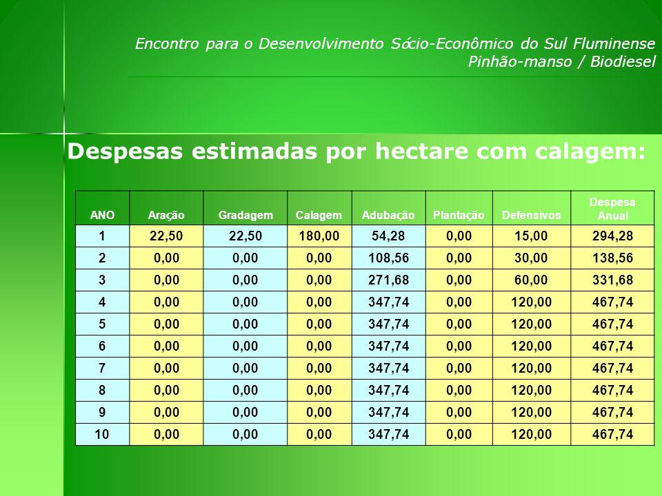 Encontro para o Desenvolvimento S ó cio-Econômico do Sul Fluminense Pinhão-manso / Biodiesel Fluxo de Caixa por Ano com Calagem: Í tens 20082009201020112012 Receita120,07299,93900,071799,91 Despesa114,28138,56331,68467,74 Bruto-174,21161,37568,391332,17 Acumulado-174,21-12,84555,551887,723219,89