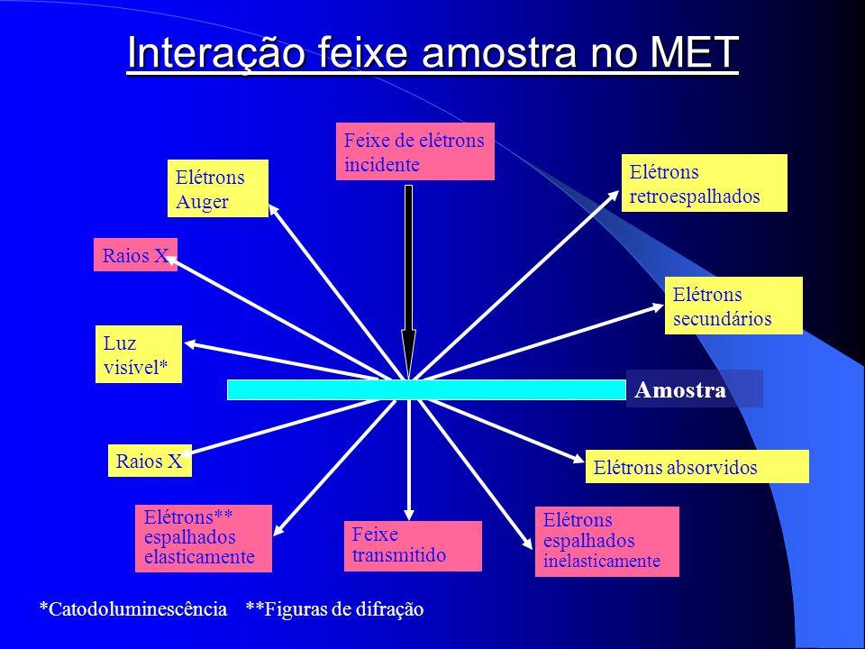 Raios X Feixe transmitido Elétrons espalhados inelasticamente Elétrons** espalhados elasticamente Feixe de elétrons incidente Luz visível* Elétrons se