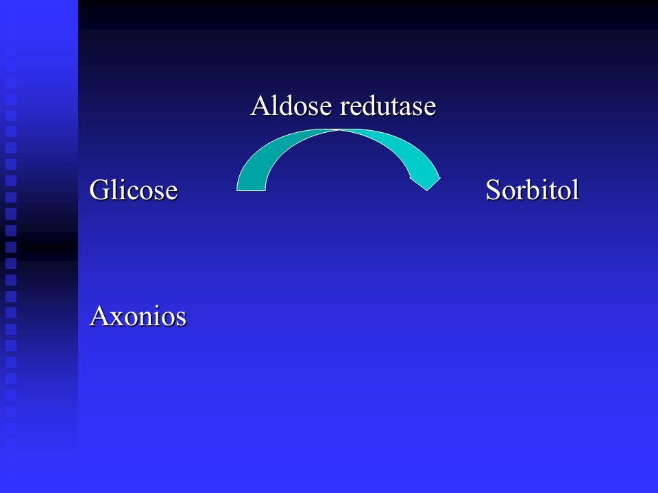 Aldose redutase Aldose redutase Glicose Sorbitol Axonios