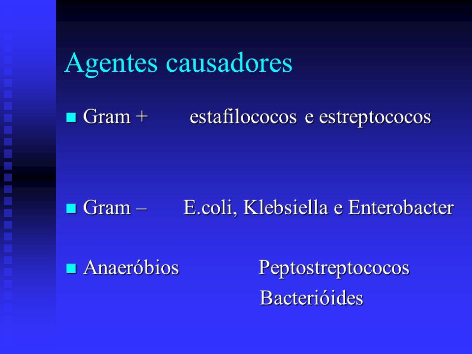 Agentes causadores Gram + estafilococos e estreptococos Gram + estafilococos e estreptococos Gram – E.coli, Klebsiella e Enterobacter Gram – E.coli, K