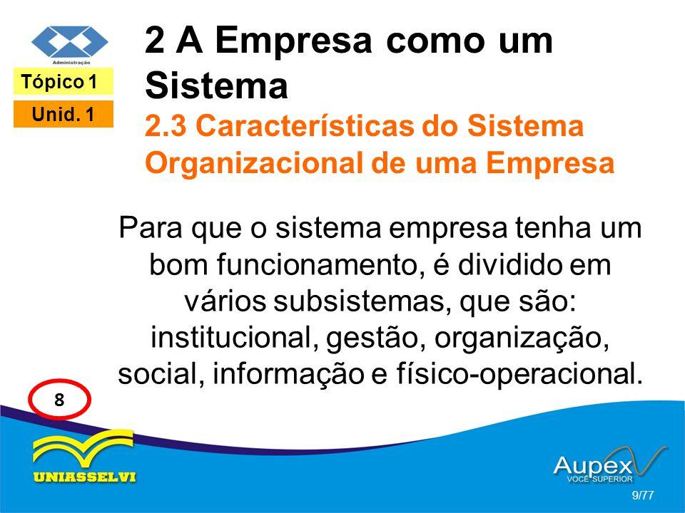 2 A Empresa como um Sistema 2.3 Características do Sistema Organizacional de uma Empresa Para que o sistema empresa tenha um bom funcionamento, é divi