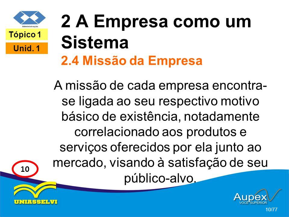2 A Empresa como um Sistema 2.4 Missão da Empresa A missão de cada empresa encontra- se ligada ao seu respectivo motivo básico de existência, notadame