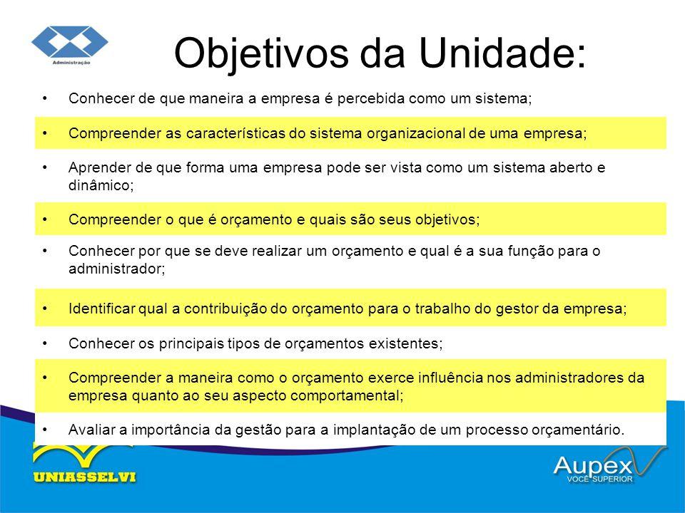 Objetivos da Unidade: Conhecer de que maneira a empresa é percebida como um sistema; Compreender as características do sistema organizacional de uma e