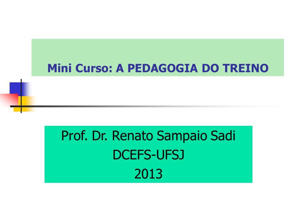 Mini Curso: A PEDAGOGIA DO TREINO Prof. Dr. Renato Sampaio Sadi DCEFS-UFSJ 2013