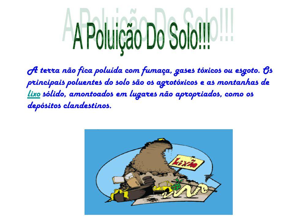 A terra não fica poluída com fumaça, gases tóxicos ou esgoto. Os principais poluentes do solo são os agrotóxicos e as montanhas de lixo sólido, amonto