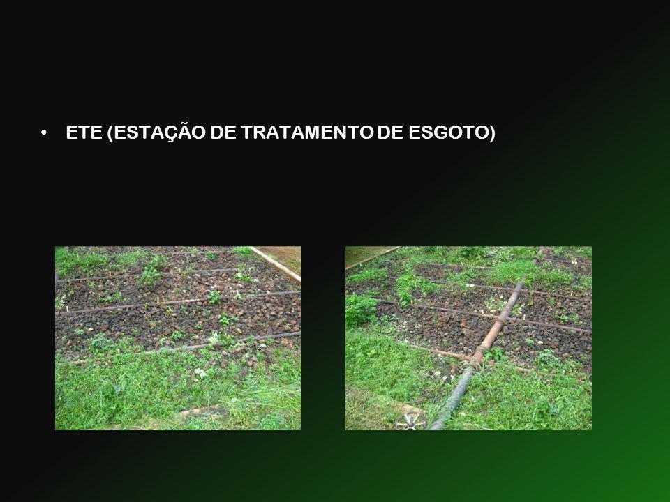 ETE (ESTAÇÃO DE TRATAMENTO DE ESGOTO)