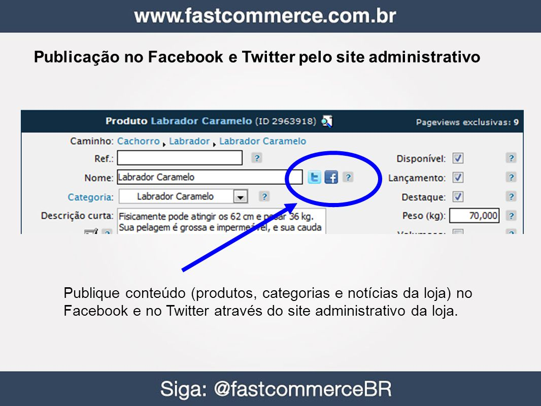 Publicação no Facebook e Twitter pelo site administrativo Publique conteúdo (produtos, categorias e notícias da loja) no Facebook e no Twitter através do site administrativo da loja.
