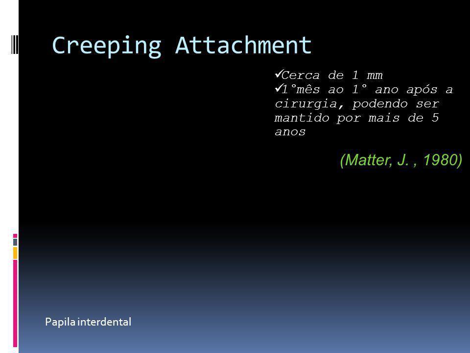 Creeping Attachment Cerca de 1 mm 1°mês ao 1° ano após a cirurgia, podendo ser mantido por mais de 5 anos (Matter, J., 1980) Papila interdental