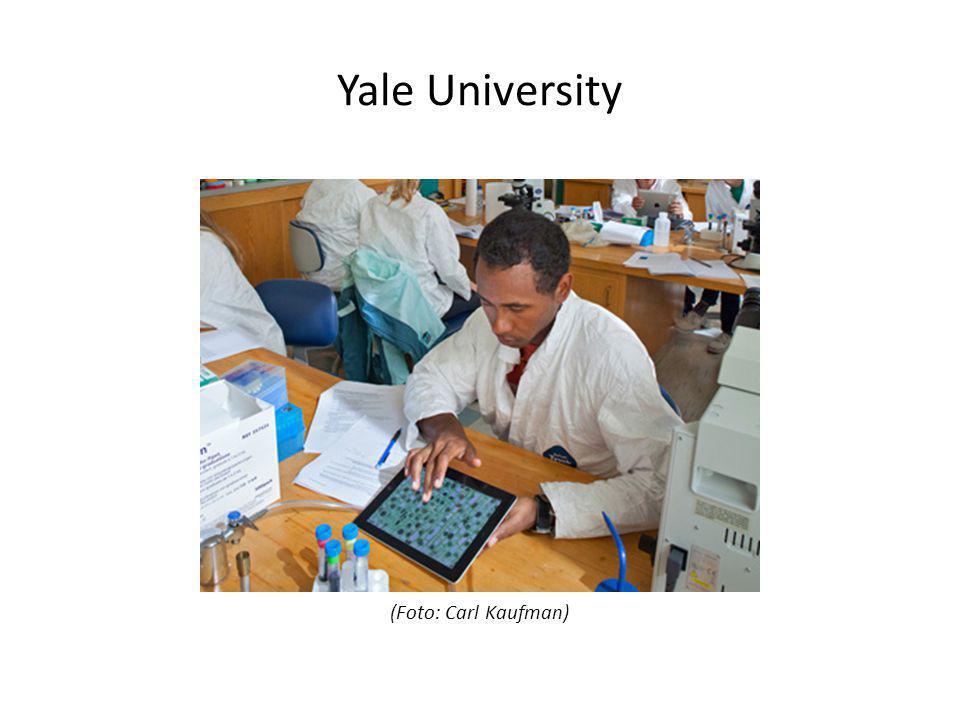 Yale University (Foto: Carl Kaufman)