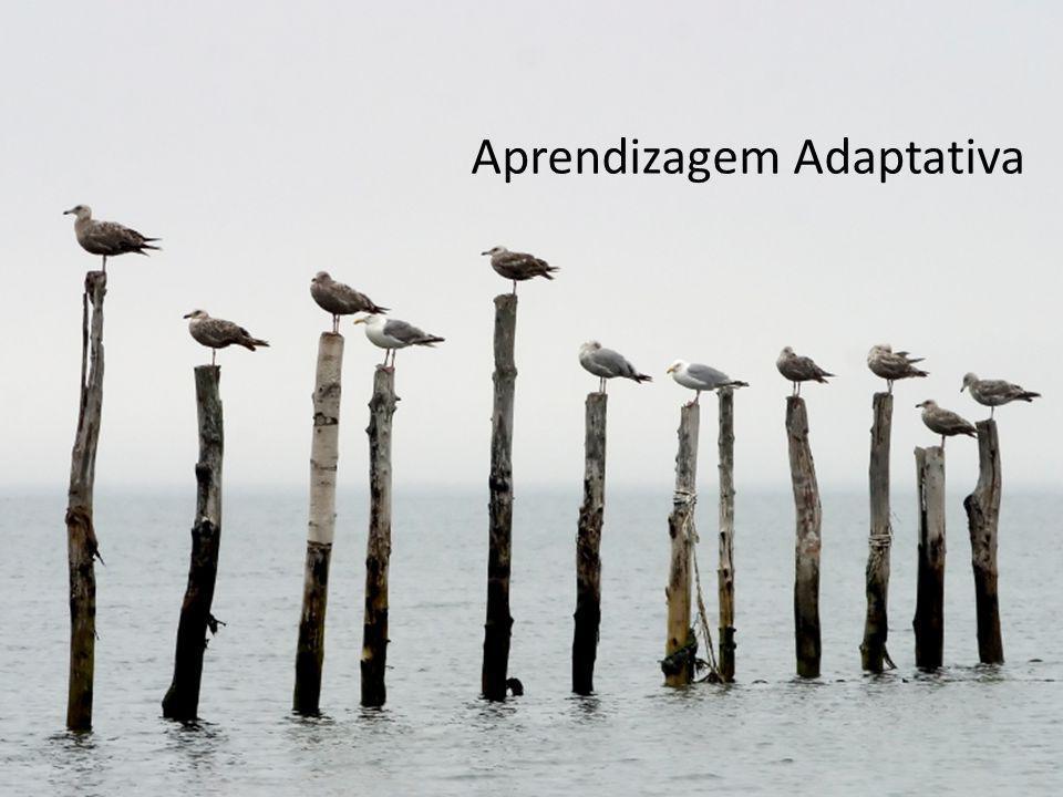 Aprendizagem Adaptativa