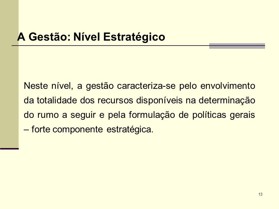 13 A Gestão: Nível Estratégico Neste nível, a gestão caracteriza-se pelo envolvimento da totalidade dos recursos disponíveis na determinação do rumo a