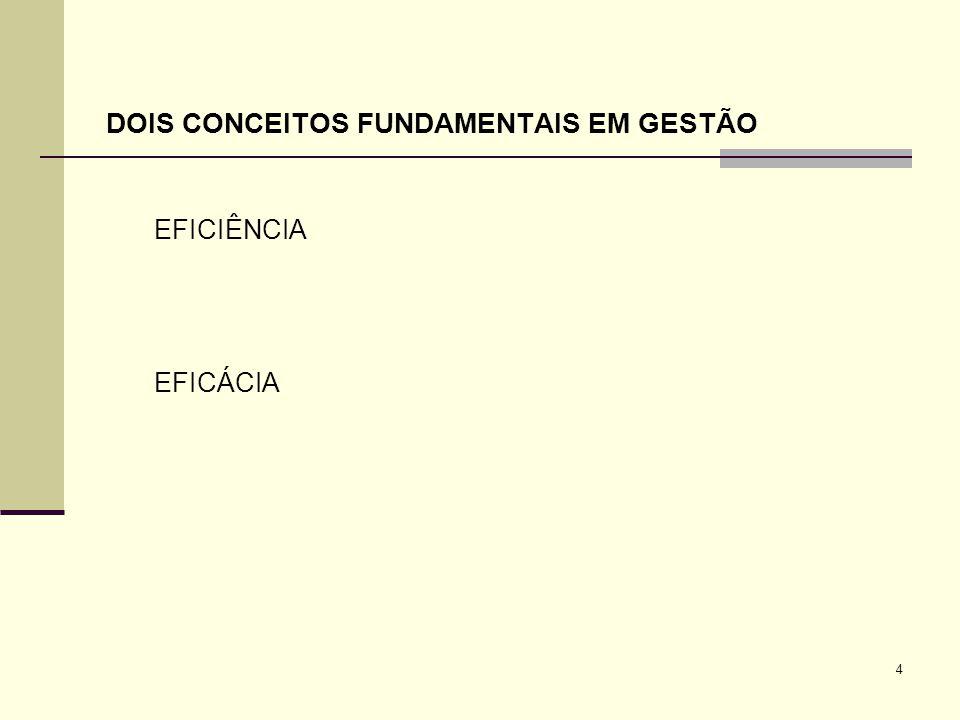 4 EFICIÊNCIA EFICÁCIA DOIS CONCEITOS FUNDAMENTAIS EM GESTÃO