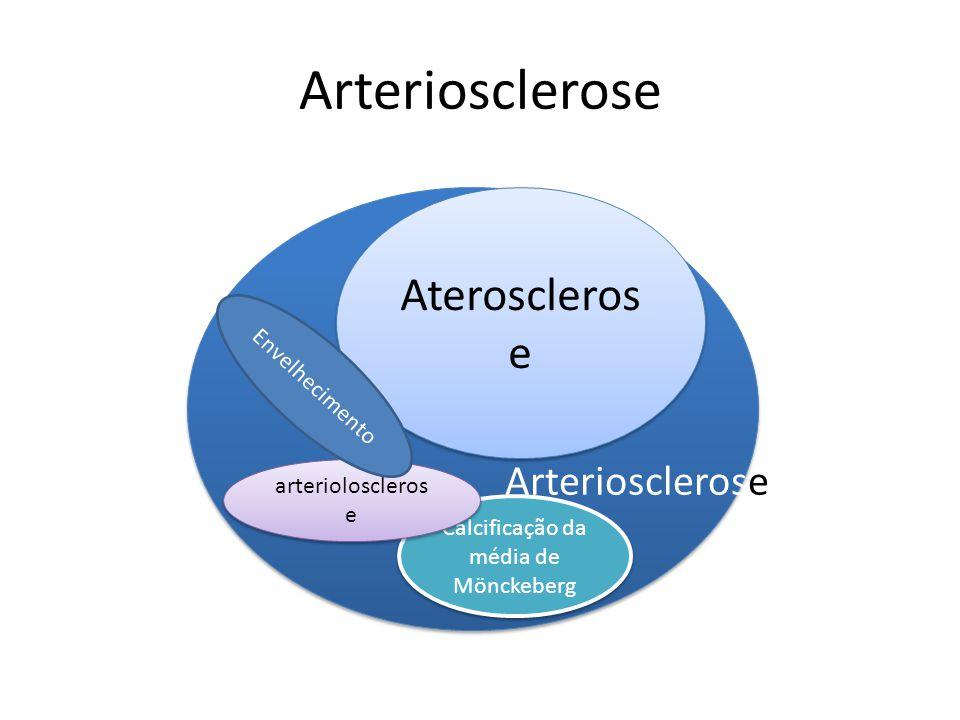 Arteriosclerose Ateroscleros e Calcificação da média de Mönckeberg arterioloscleros e Arteriosclerose Envelhecimento