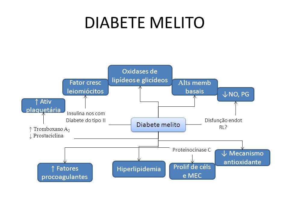Diabete melito NO, PG Disfunção endot RL.