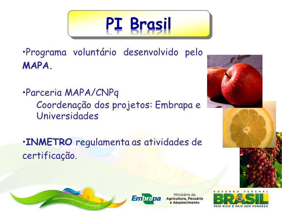 Programa voluntário desenvolvido pelo MAPA. Parceria MAPA/CNPq Coordenação dos projetos: Embrapa e Universidades INMETRO regulamenta as atividades de